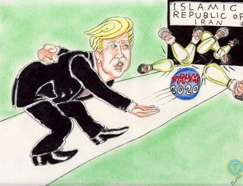 بازی بولینگ رئیس جمهور دونالد ترامپ (گربه)