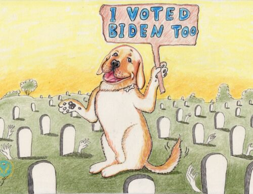 حتی سگها و مردگان هم به جو بایدن رای دادند ( کاریکاتوری از گربه)